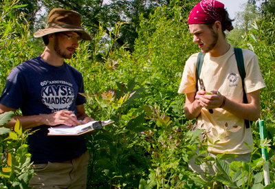 Students work in the field